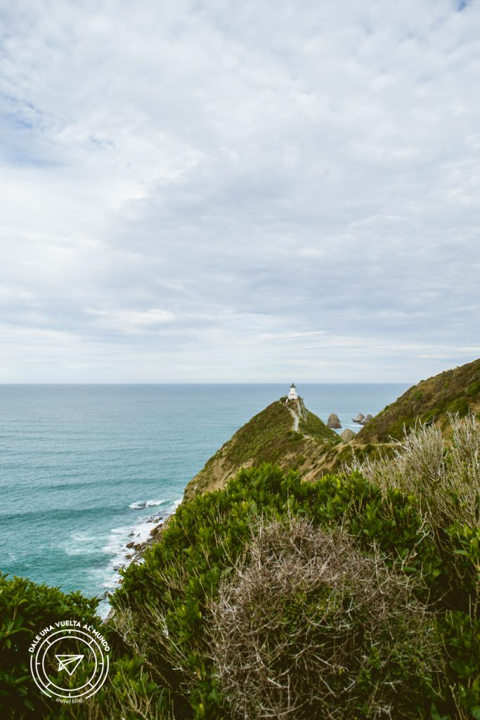 Nugget Point Dunedin Nueva Zelanda